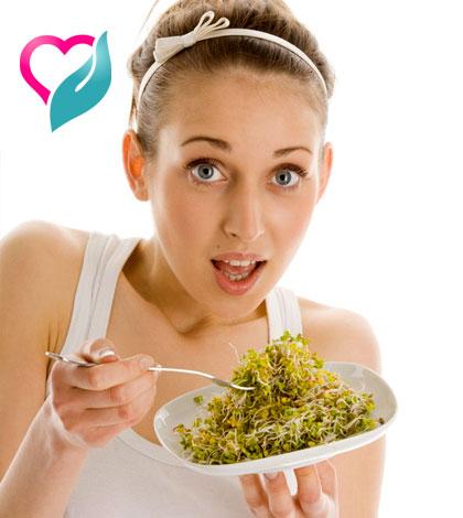 fenugreek sprout