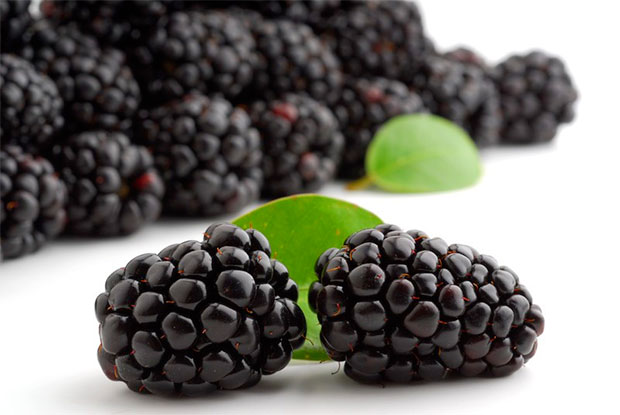 black-raspberries
