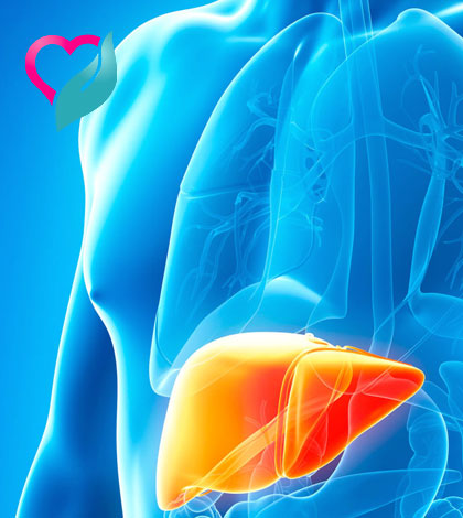 Signs of Liver Cancer