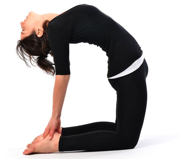 Ushtrasana yoga