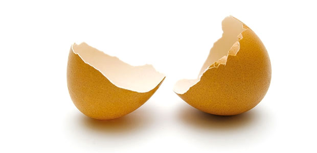 egg shell break