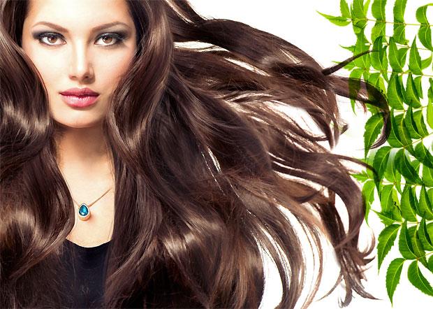 neem for lustrous hair