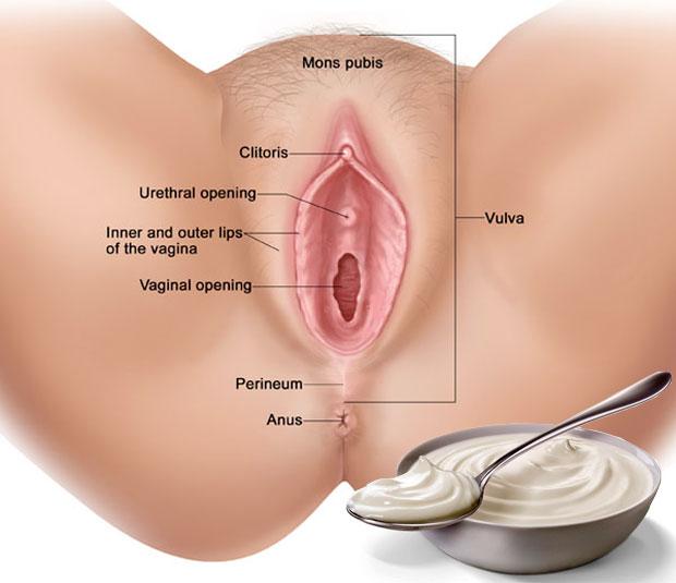 vagina and yogurt